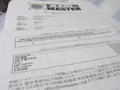 xml-master_report.jpg